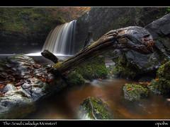 The Scwd Gwladys Monster! (opobs) Tags: morning november autumn wet water southwales wales waterfall rocks flood wfc pontneddfechan neathvalley ladyfalls welshflickrcymru afonpyrddin sgwdgwladys opobs michaeljstokesawpf