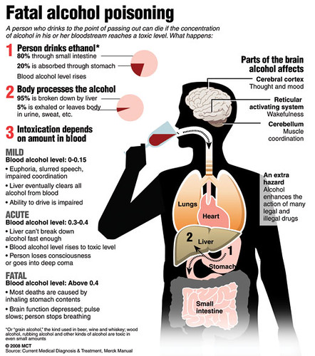 the physical effects of alcohol on Physical effects chronic alcohol abusers are at high risk for a number of health  conditions one of the most prominent long term effects of.