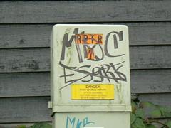MBC (northwestgangs) Tags: tacoma gangs bloods crips surenos nortenos