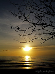 268 (Angkulet) Tags: sunset beach sugarbeach negrosoccidental sipalay