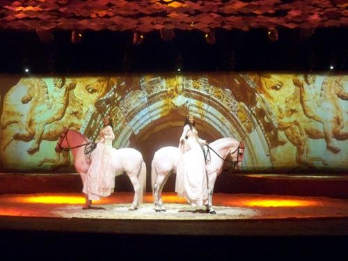 cavalia-horses