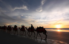 Broome Australia 2008_04 (Gary Hayes) Tags: coast indianocean sunsets australia redrock camels westernaustralia broome cablebeach canonefs1022mm garyhayes silkcharm canon40d samsungnv24hd