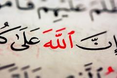 بــسم الله الرحمـن الرحيــم