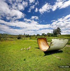 Donald Duck Family | Vertorama (Omar Junior) Tags: blue sky panorama fish verde rio vertical azul square geotagged grande duck pentax d portoalegre cu fisheye tur belem porto grama pato nuvens alegre nuvem ist poa caminhos rs riograndedosul velho sul patos metade tonel rgs cambar rurais defish 1728mm pentaxffisheye135451728mm cambartur geo:lat=30202902 geo:lon=51085063 vertomara