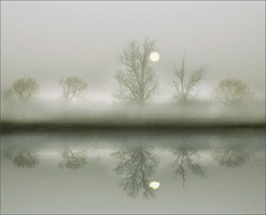 Lifting fog (adrians_art) Tags: morning trees winter sky sun mist reflection water weather fog sunrise landscape dawn grain marsh thesecretlifeoftrees littlestoriespicswithsoul mastersoflifegallery