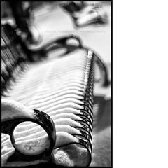 B&W Bench Bokeh Baby! (Dave the Haligonian) Tags: bw snow canada bench blackwhite novascotia dof nightshot kodak bokeh tmax nightscene grayscale halifax granvillestreet hbw nikkor50mm18d niksoftware nikond90 silverefexpro dsc2486nef bwbenchbokehbaby nikond90bw
