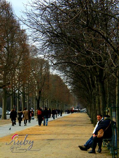 avenue des champs elysees_02