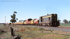 T333 1977 (michaelgreenhill) Tags: trains victoria vic vr scannedslides rpvrtclass1stseriest333 rpvrtclass1stseries