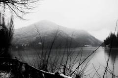 Refrigerio lacustre (Nikon'Girl) Tags: bw lago bn neve inverno freddo piediluco
