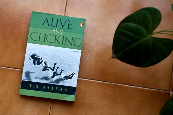 Alive and Clicking - Chitra Aiyer Photography
