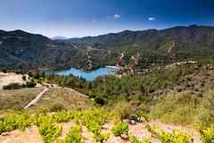 Wine villages (TeryKats) Tags: trees mountain lake pine landscape high view wine dam cyprus roads troodos lefteris arsos katsouromallis terykats