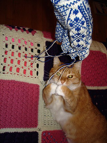 Knitting is fun!