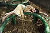 klaudia (chibusquephotography.com) Tags: portrait fashion model glamour outdoor excellence yougotit plus4 strobist plus4excellence invitedphotosonlyplus4 chibusque summercouture id3photographysummercouture