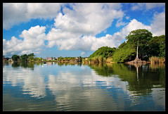 Belize River Inlet (reprocessed) (sandy.redding) Tags: cruise landscape belize centralamerica centroamerica nikkor1855mmf3556g