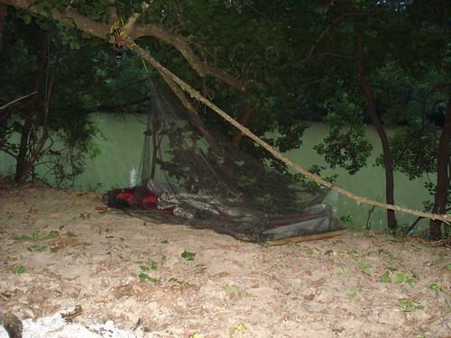 San Jacinto Netting.jpg