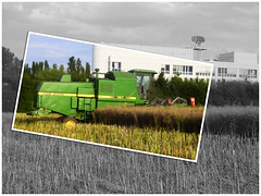 Harvest (gatowlion) Tags: color colour photoshop germany bayern bavaria action harvest rape raps ernte bildbearbeitung unterschleissheim