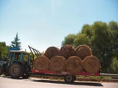 Fandonie ambientali (ecoballe) (alfiererosso) Tags: tractor rural traktor farming campagna bauer land farmer hay trattore campesino fieno agricoltura contadino rurale countryland