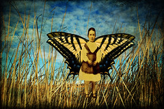 butterfly girl (Mary Hockenbery (reddirtrose)) Tags: topf25 butterfly wings ancestor bosque change everything swallowtail tigerswallowtail ghostbones