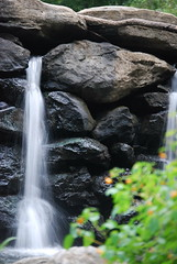 DSC_0051 (Kathryn Poole) Tags: park creek state ridley
