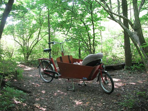 Bakfiets in woods