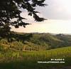 Gaiole in Chianti - Castagnoli
