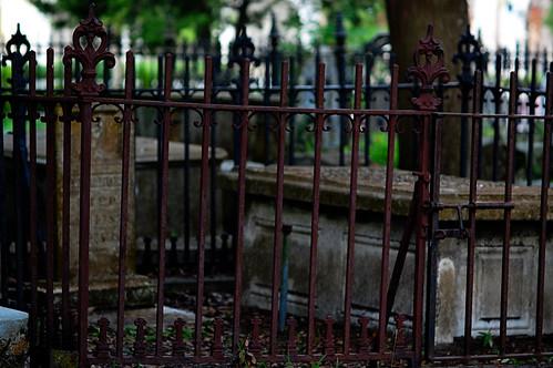 Fenced forever