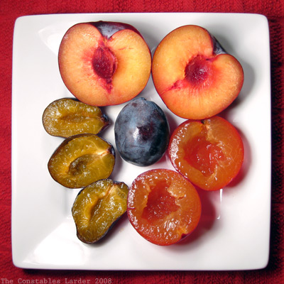 Plate of Plums