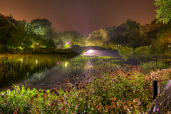 central park south (AAA Studio) Tags: park street new york bridge flowers trees light lake ny david night pond south magic central mapping tone blaine hdr vob