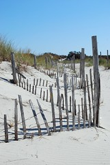 Sand dune fences (said the White Rabbit.) Tags: seashore barrierbeach islandbeachstatepark newjerseystatepark seasideparknj