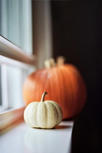 Pumpkin Sill