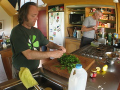 Making parsely pesto in the King Country, New Zealand