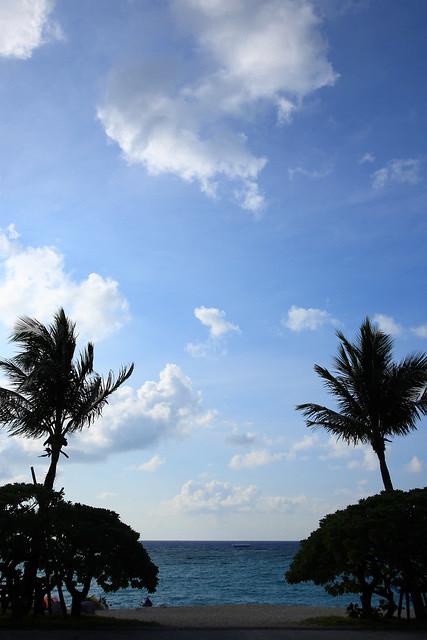 夏場の海辺