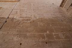 DSC_0333 (Petit Doisneau) Tags: tokina1224 egipto macrophoto medinethabu komombo edfu memnon wideanglelens tamron70300 nikond80 valledelnilo templosvalledelnilo