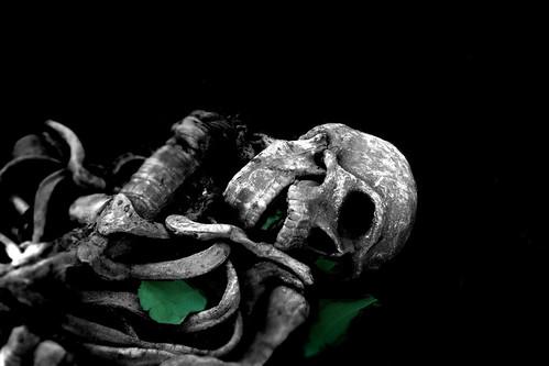 green death DSCN3296