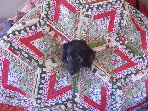 Murph Modeling Christmas Tree Skirt Quilt