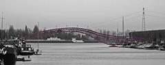 (dana jänichen) Tags: bridge bw holland netherlands amsterdam lumix blackwhite panasonic crop monochrom niederlande colorkey fz28
