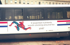 Spider-Man - Got Milk Metrobus 199908