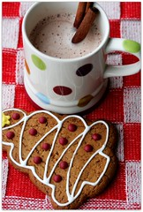December (C.Mariani) Tags: christmas xmas red white hot texture season table tricot knitting december cookie drink chocolate cinnamon gingerbread towel fabric mug icing stick treat decorated mycreation