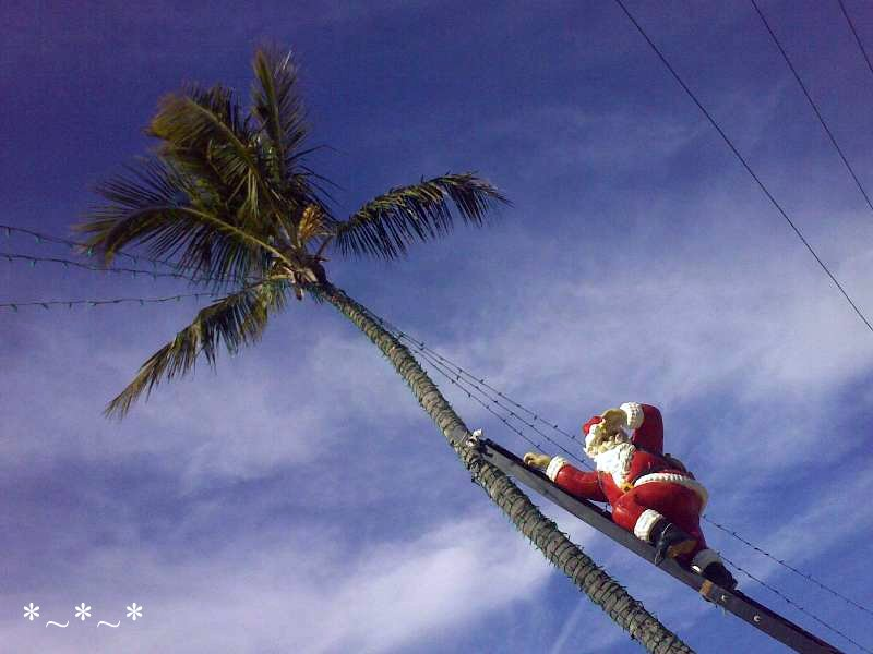 11272008435-Climbing-Santa-Tween-Waters-Inn