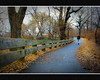 Central Park (DP|Photography) Tags: newyork centralpark boxingday robertfrost soe dayafterchristmas walkinthepark milestogobeforeisleep woodedpathway platinumphoto goldstaraward debashispradhan dpphotography runninginthepark dp|photography