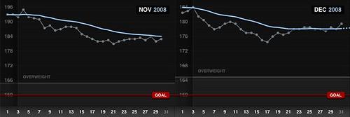 Weightbot 2008