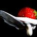 Erdbeere auf Quark