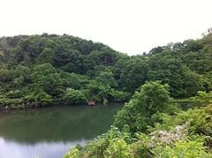 静かできれいな池