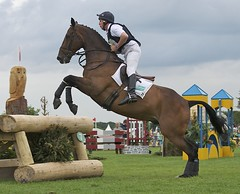 The 127th Lincolnshire Show (Grand-Poobar) Tags: show blue red horses horse woman brown white dogs girl smart animal sport yellow training mammal jump jumping mare ride legs boots police competition event riding teen jacket knights teenager poles bent patch rider leaning equestrian horseback magnificent leaping stallion saddle equine bridle hurdle hooves showground stirrups heavyhorse jonpym