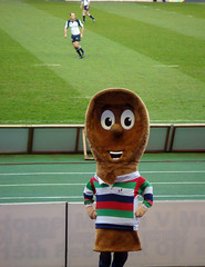 Wooden spoon rugby Mascot at Edinburgh v Leinster Magners League Rugby match, Murrayfield
