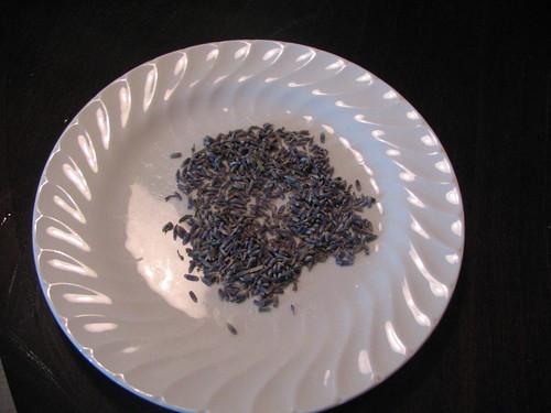 lavender 109