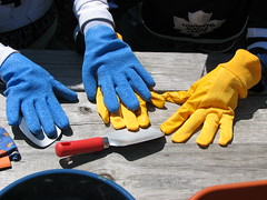 Our Gardening Gloves