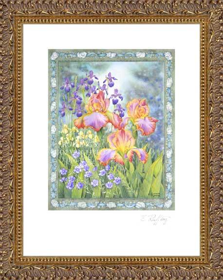Jubliee Iris Floral by Elizabeth Ruffing, Print Framed