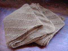 Clapotis - folded