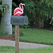 quirky mailboxes